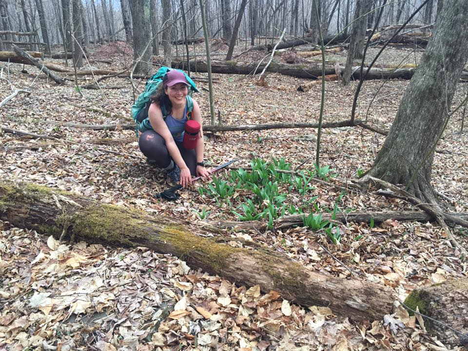 A patch of ramps